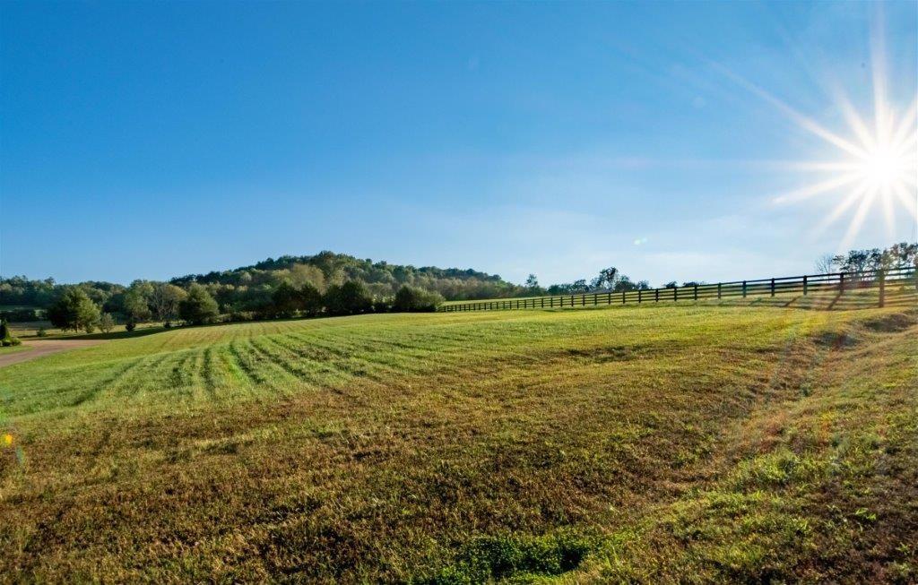 Residential Lot for Sale in Handscug Estates in Giles Co. TN