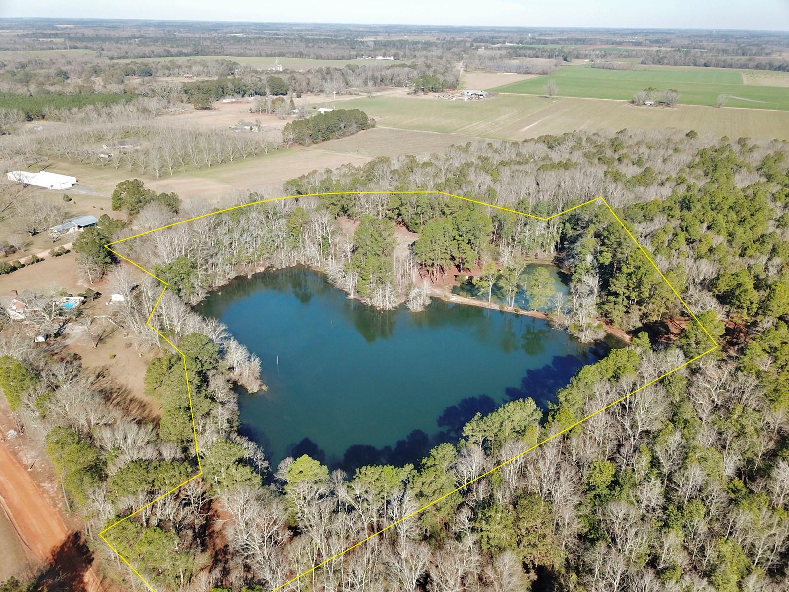 Alabama Land for Sale - Pond - 12acres South AL - Geneva Co