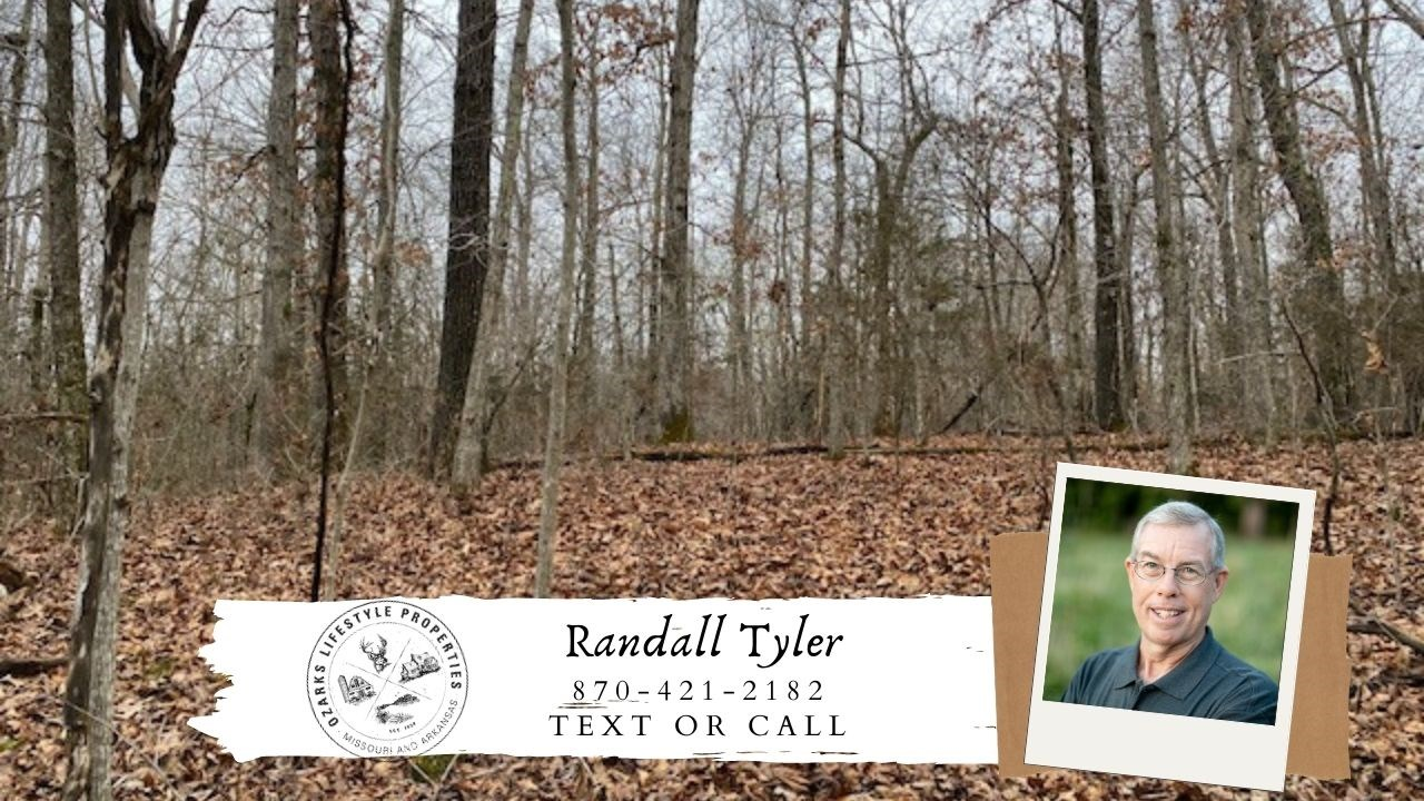 Wooded Acreage on State Hwy. for Sale near Salem AR