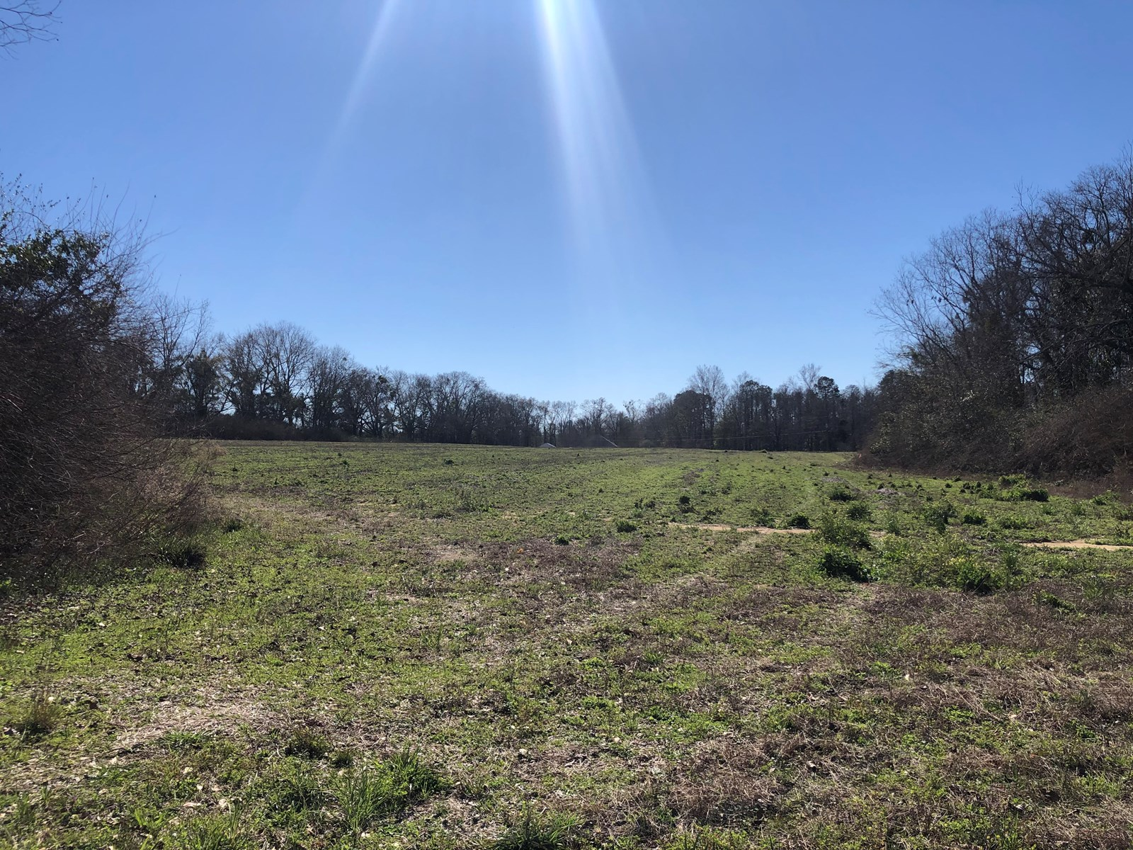4.61 Acres on Highway 52 for sale Slocomb, AL