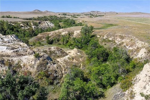 320 Acres of recreational hunting land with cabin