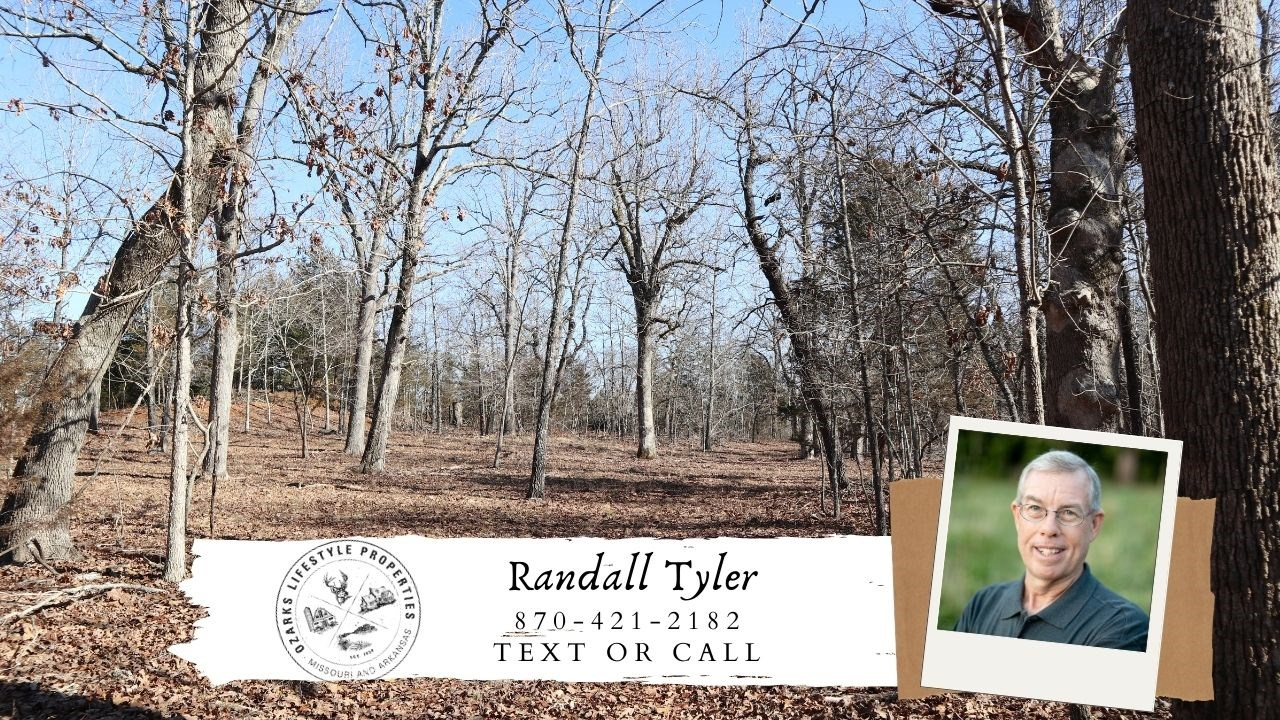 Arkansas Ozarks Wooded Property with Building Sites for sale