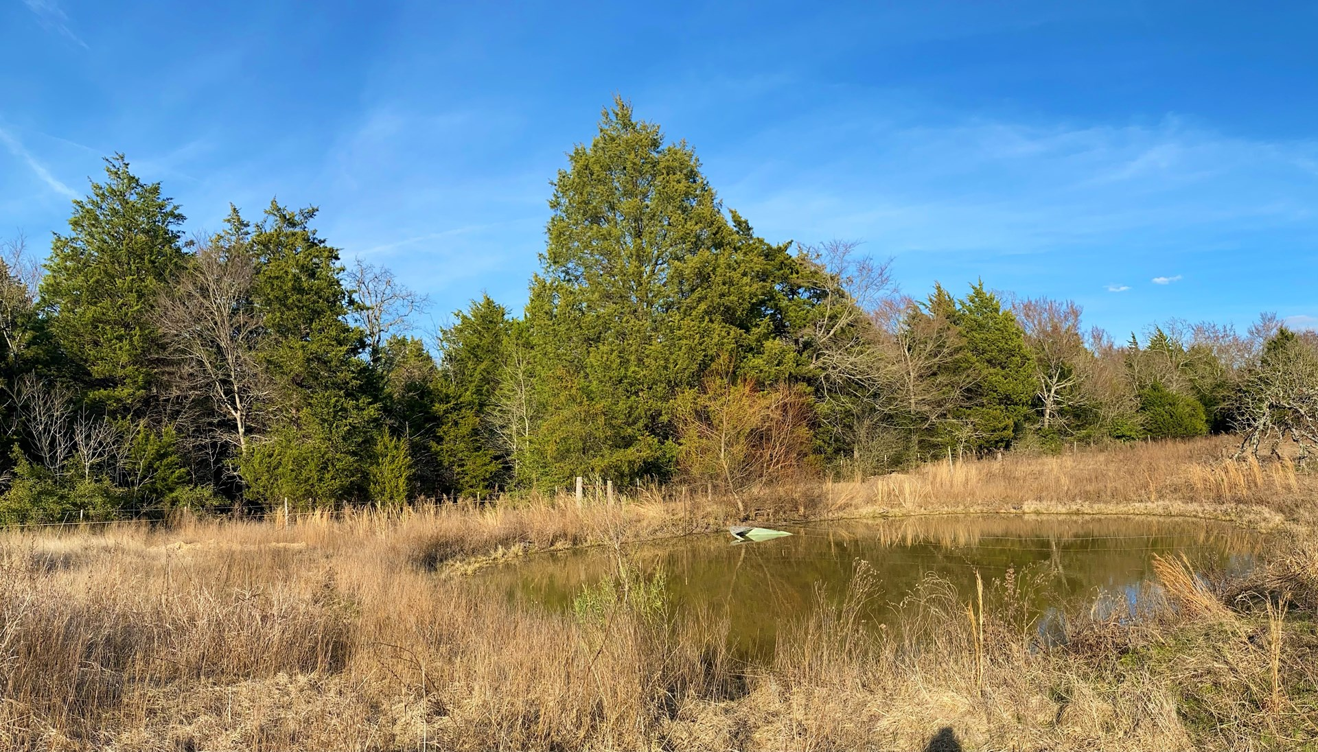 Secluded Country Homesite