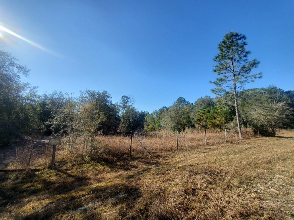 27 acres HUNTING, close to FISHING Dixie County