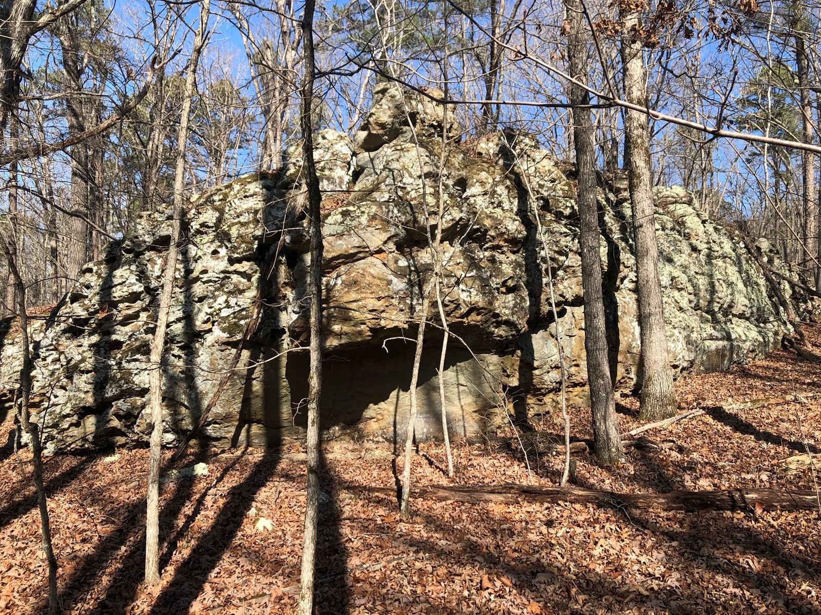 Hunting/Recreational Land in Arkansas
