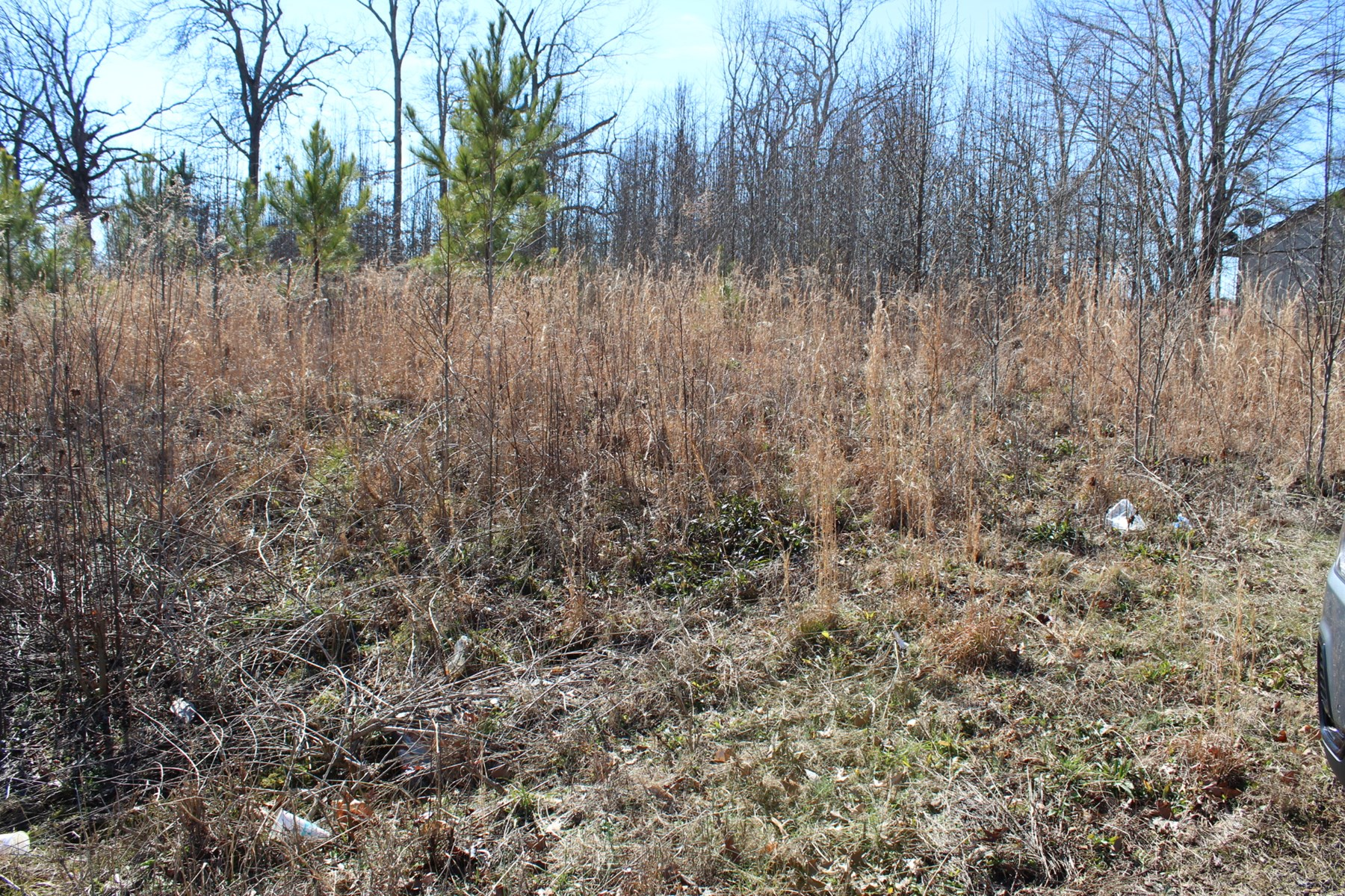 LAND FOR SALE TO BUILD A HOME ON IN SMALL TOWN TN