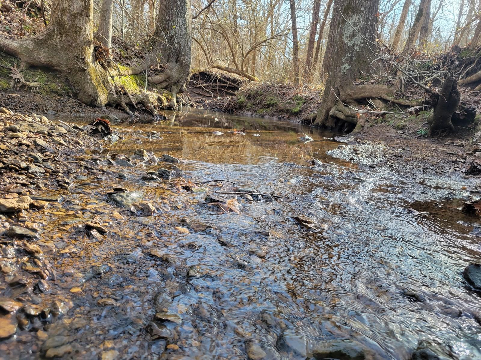 Land for sale Barton County MO