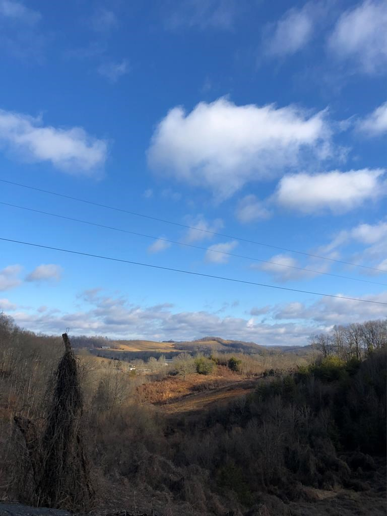 8 Acres Clinch Mountain Property For Sale in Thorn Hill, TN