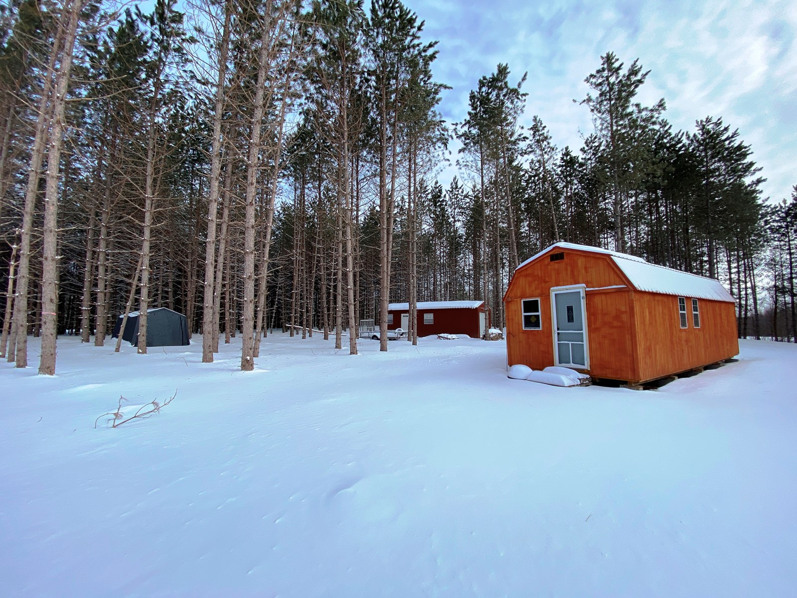 Cabin with wooded acreage in Willow River