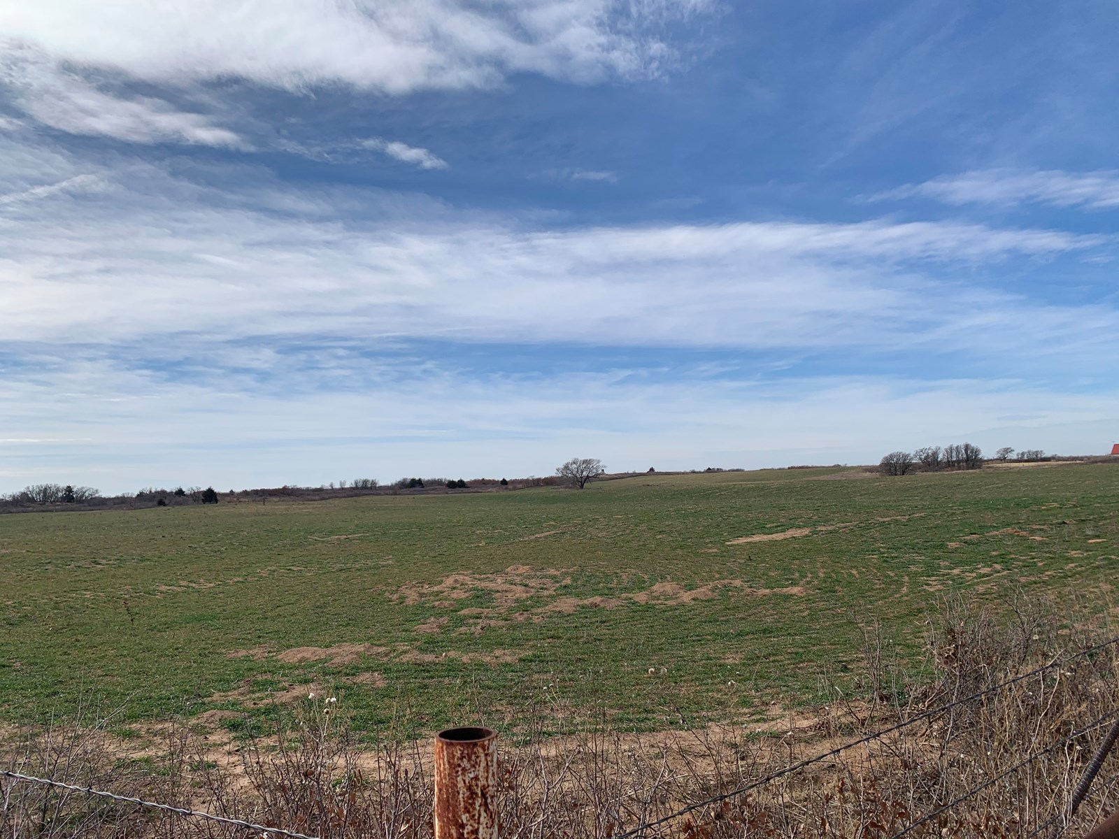 LAND FOR SALE IN SAYRE, OK