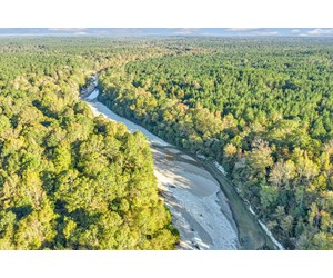 733 Acres Timberland Thompson Creek West Feliciana Parish