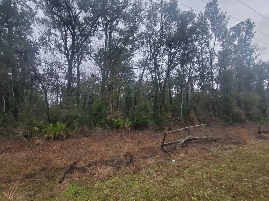 Long Pond Landing S/D Chiefland, FL Levy County