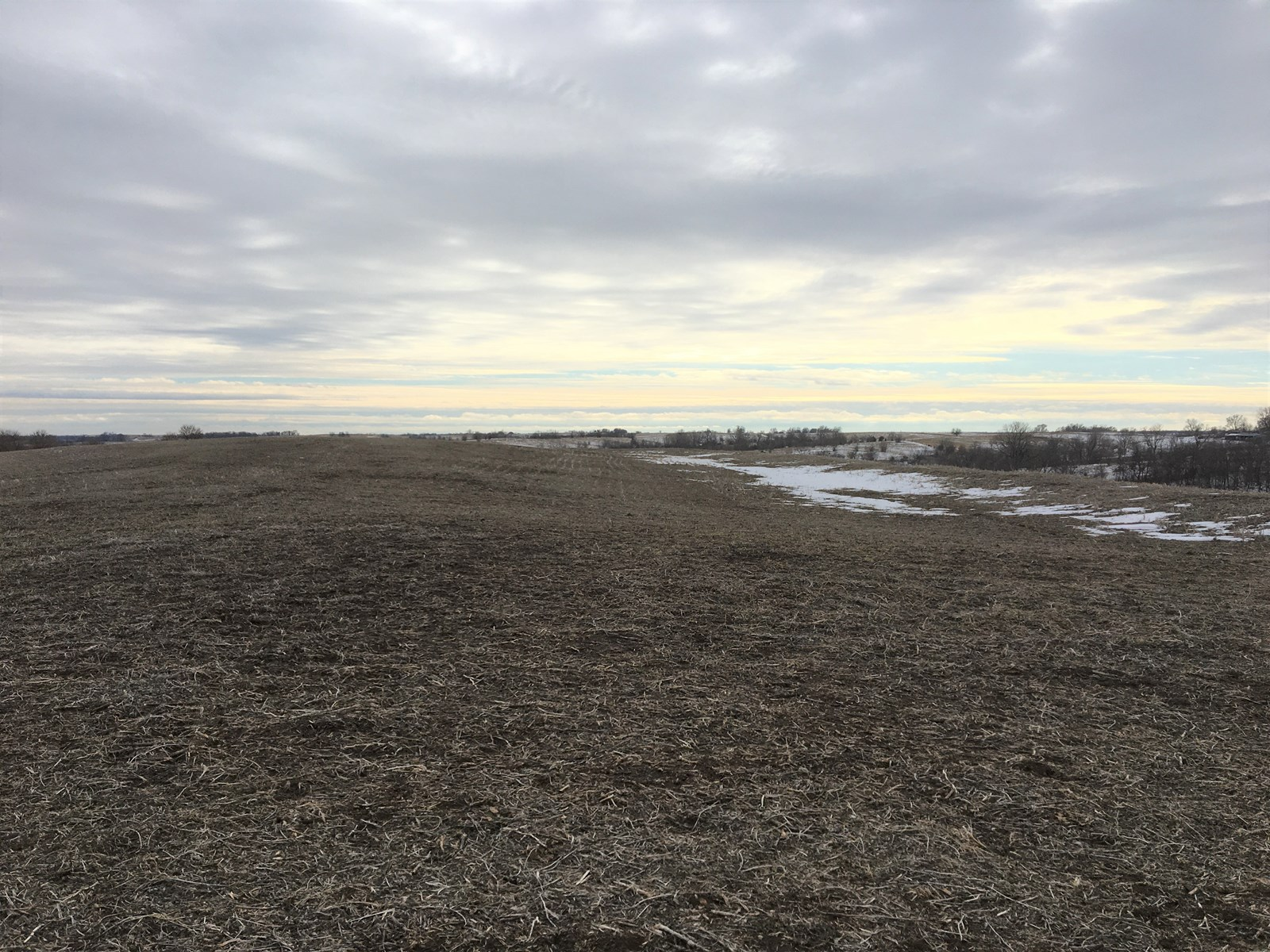 40+/- Acres, Terraced, Tiled, Highly Tillable – Tract 1 of 3