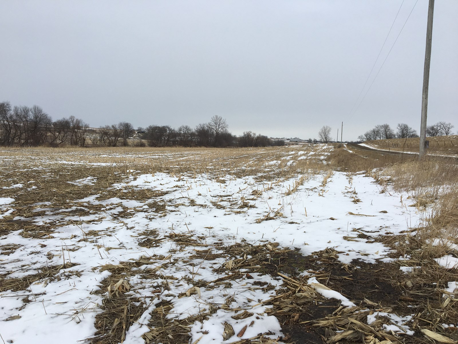 78+/- Acres, Row Crop, Bottom & Hill – Tract 2 of 3