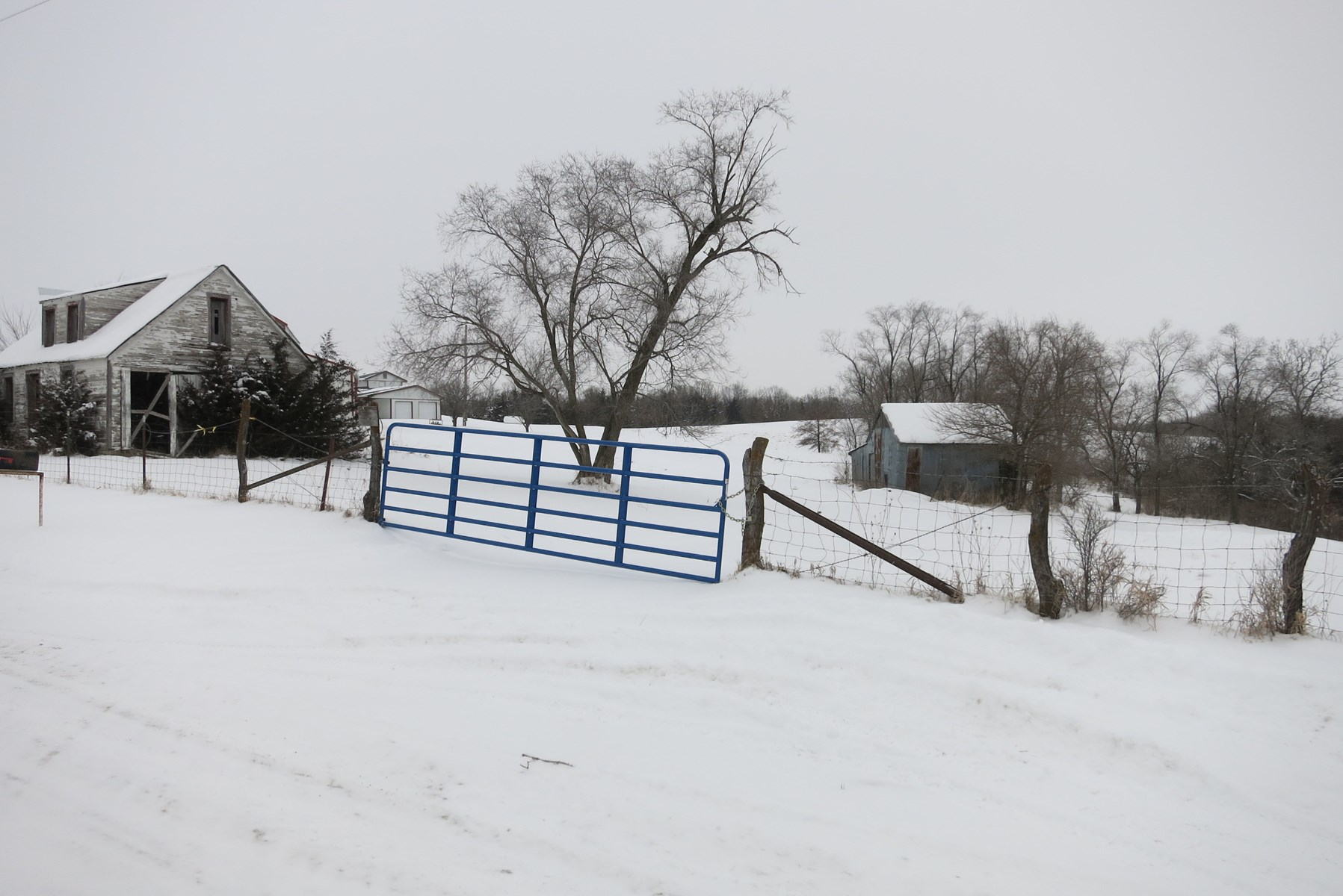 For Sale 140 Acre m/l NW MO Hunting Farm