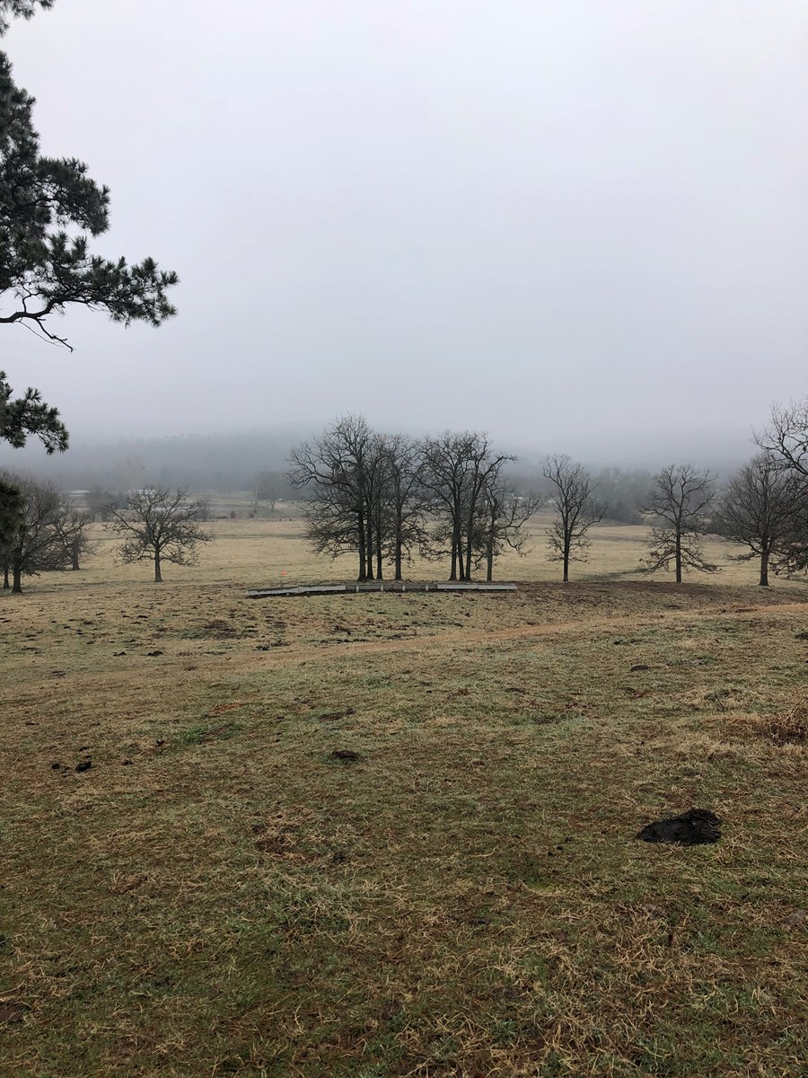 BEAUTIFUL HOME SITE AND RANCHETTE NEAR NATIONAL FORREST