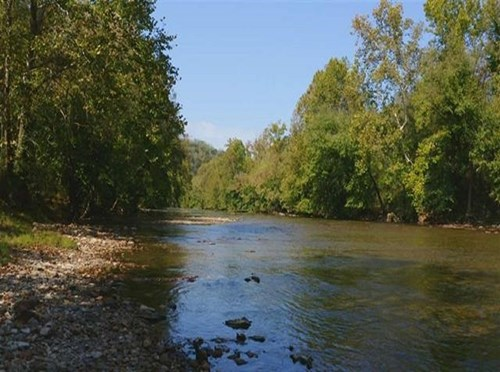 RIVERFRONT PROPERTY FOR SALE AT AUCTION CLAIBORNE COUNTY TN