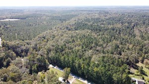 LARGE WOODED RESIDENTIAL LOTS - CHOUDRANT SCHOOL DISTRICT