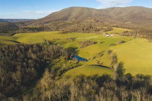 Farm for Sale at Auction in Giles County VA!
