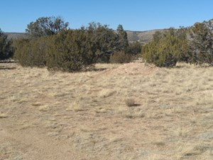 COMMERCIAL/RESIDENTIAL ZONING 2.27 ACRES