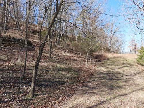 Acreage for sale in the Ozarks