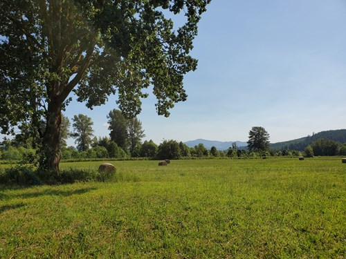 10 Acres of Farmland, Orchard and Homestead in Lewis County