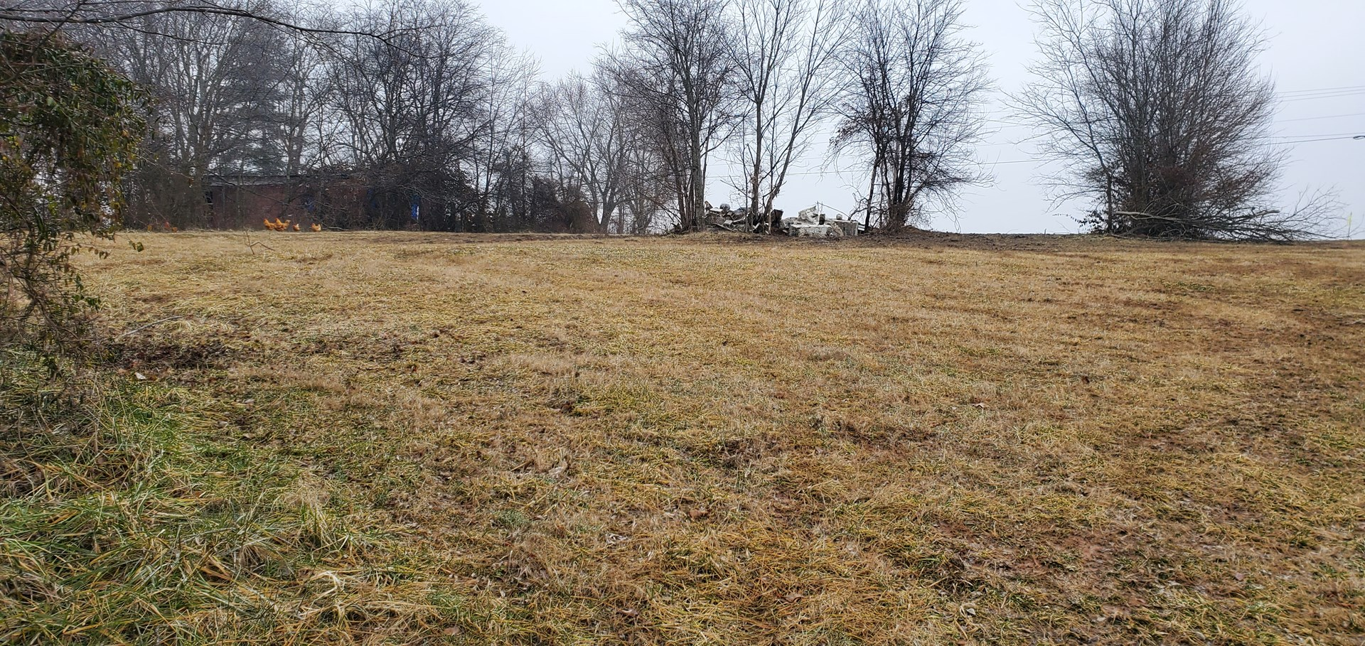 Scenic 5 acre lot for sale near Franklin Ky.