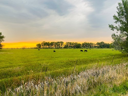 Historic 2N Ranch For Sale Deeded Acres with Dodson Creek