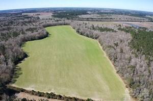 BRUNSON FARMING & HUNTING LAND