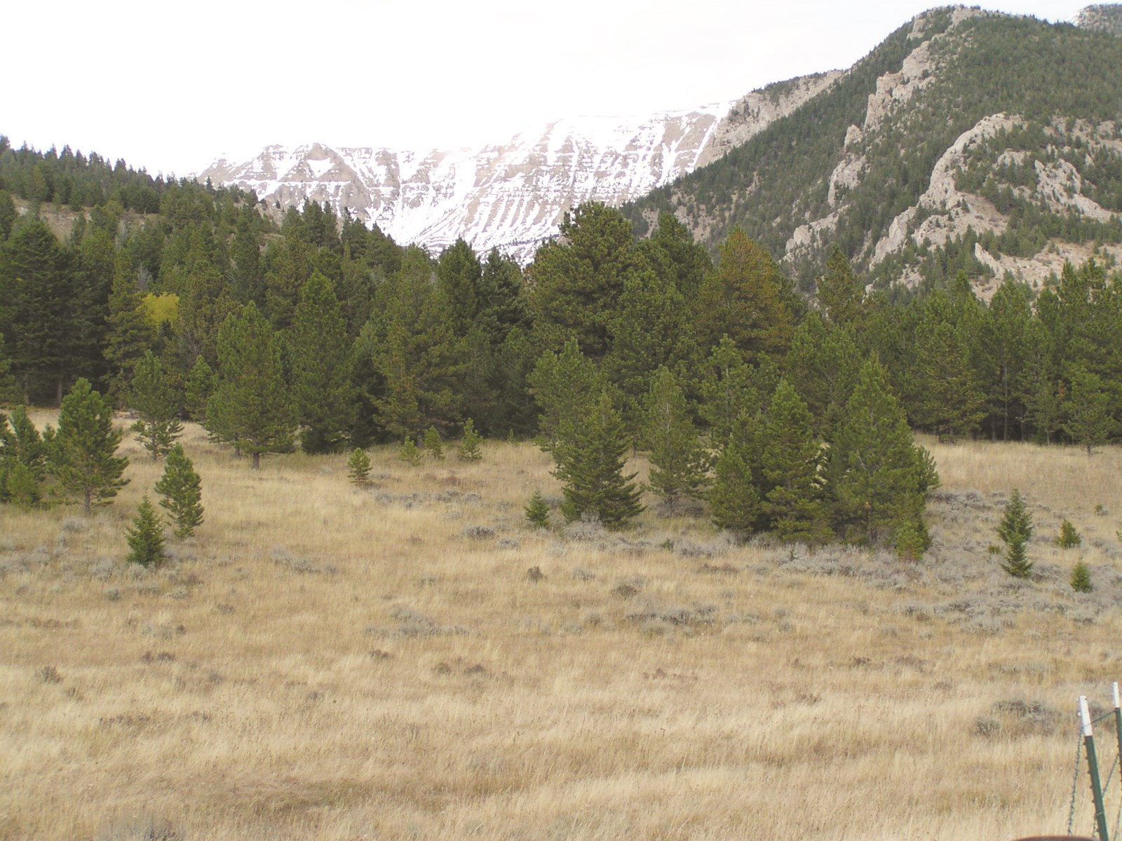 Central Montana Mountain Land For Sale