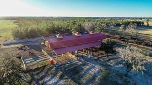 FARM FOR SALE IN NORTH FLORIDA