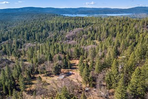 36 ACRE INCOME PRODUCING PROPERTY WITH 4 HOMES