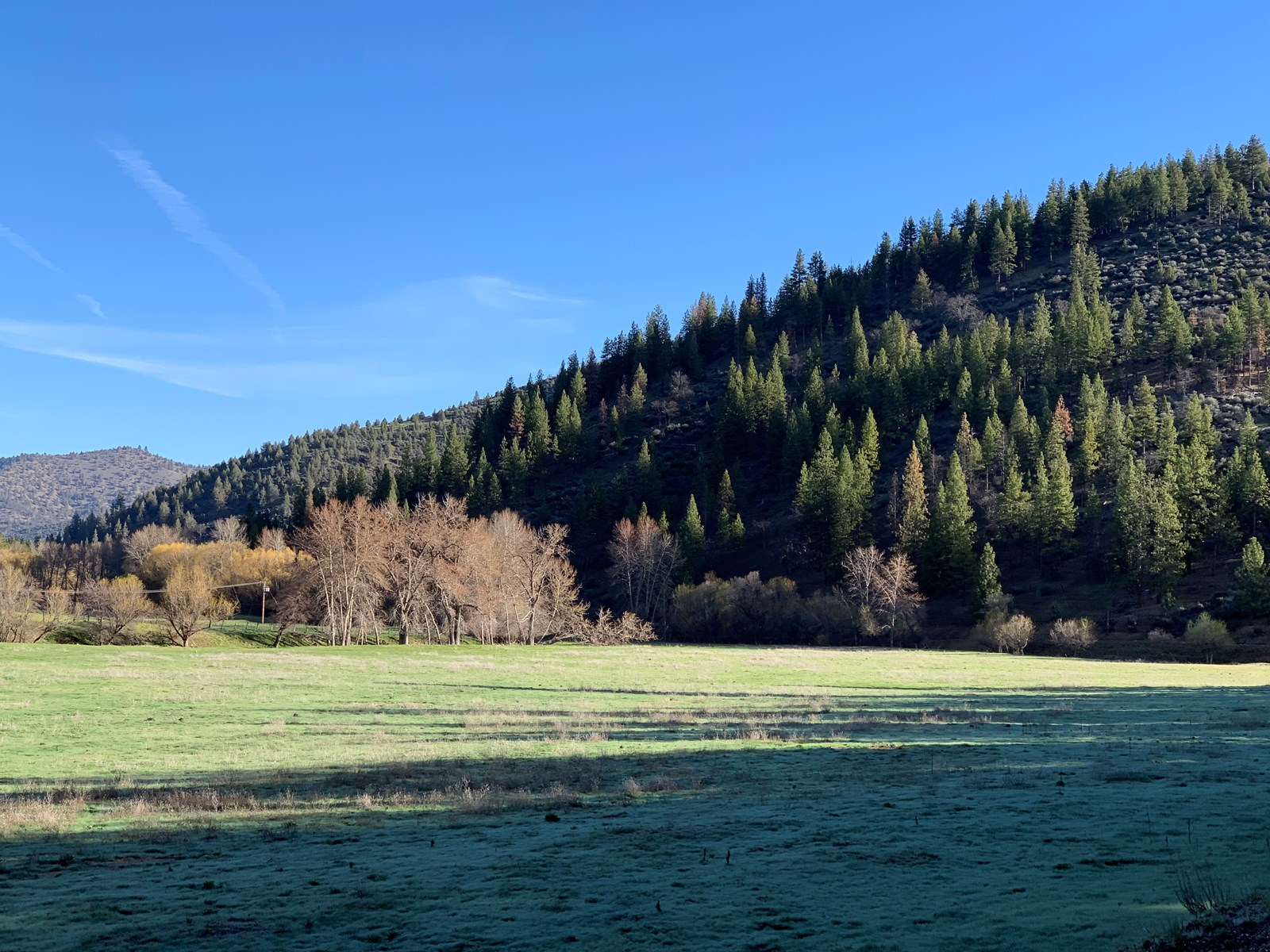 Land for Sale in Northern Calfornia, Siskiyou County