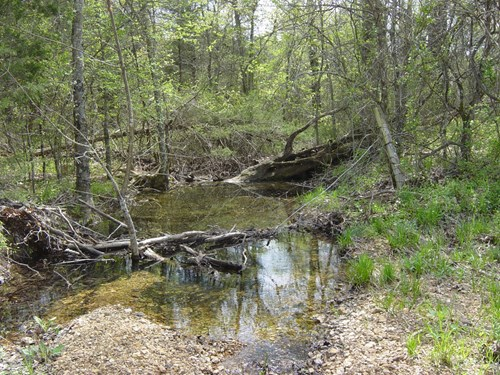 Land for sale north Arkansas, 120 acres +/- pasture, timber
