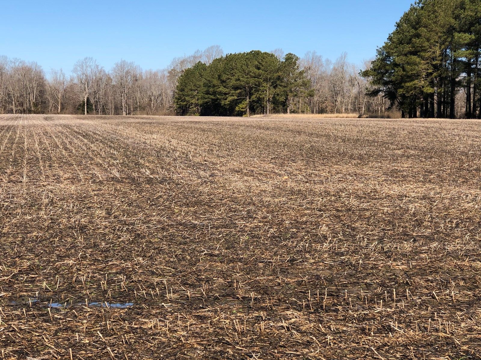 Building Lot for sale in Washington, NC