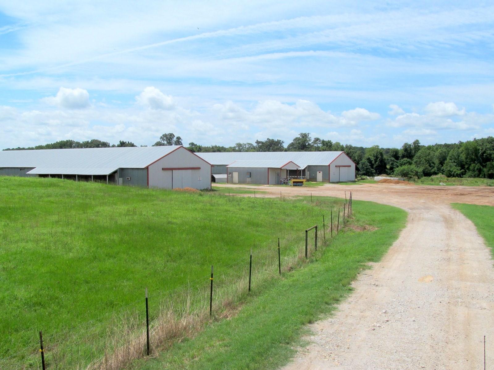 EAST TEXAS ACREAGE & POULTRY BREEDER FARM FRANKLIN COUNTY
