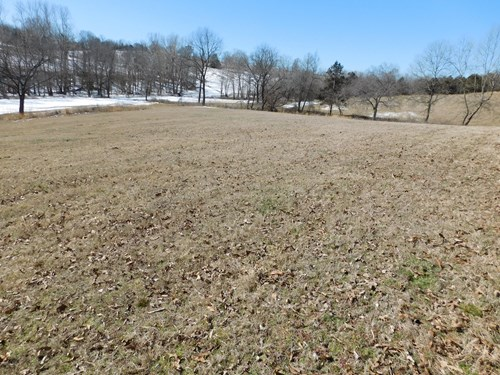 Cattle Farm Pasture Cross Fenced Boone County, Ar For Sale