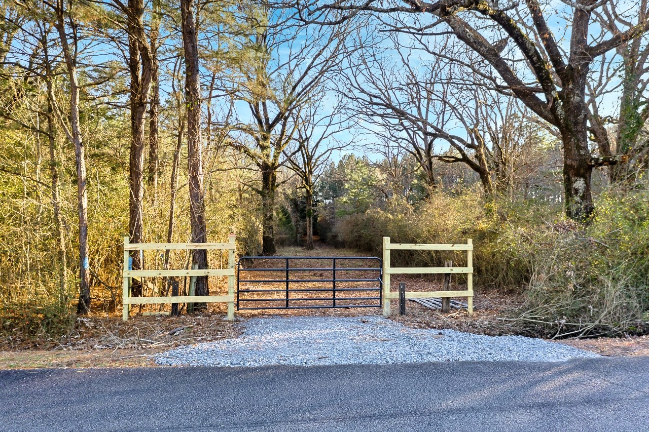 40 Acres Timberland- Investment/Recreation/Country Estate LA