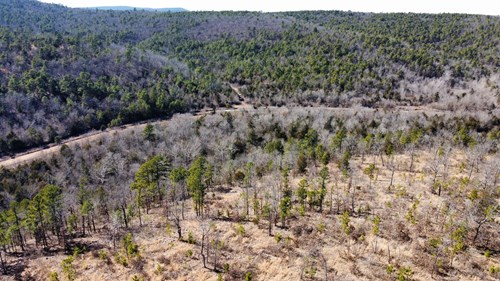MOUNTAIN LAND FOR HUNTING AND CABIN WISTER OKLAHOMA