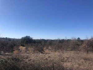 RURAL LAND FOR SALE IN TEXAS