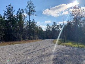 21 ACRES LAND FOR SALE SUMRALL SCHOOL DISTRICT, SUMRALL, MS