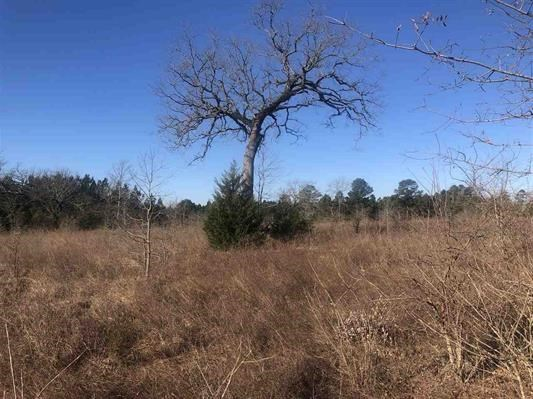Acreage for sale in Cass County, Texas