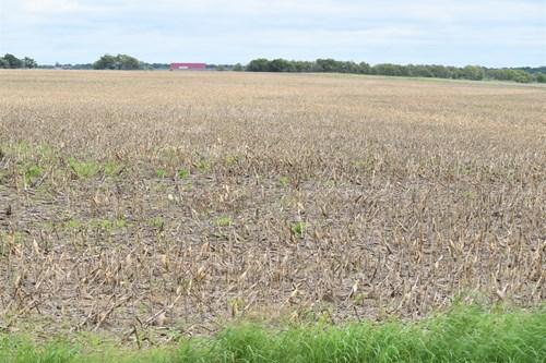 West, TX 12.91 Acres Land for Sale