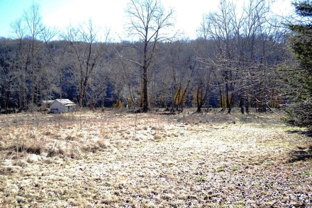 Riverfront lot on New River near Wytheville, VA