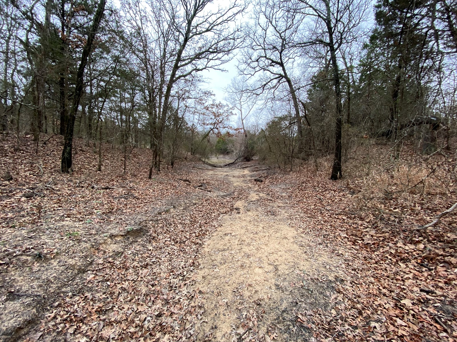 50 Acre Tract of Land on Highway 70 Near Lake Murray