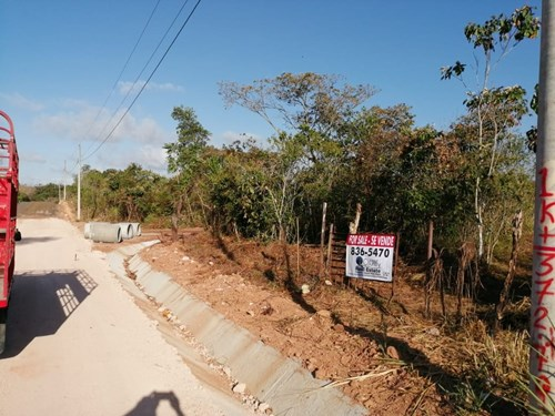11.6 HECTARES LAND FOR SALE IN TOBARE PENONOME COCLE PANAMA