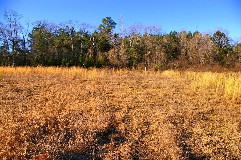4.7 Country Homesite in North Pike School District, Ruth, MS