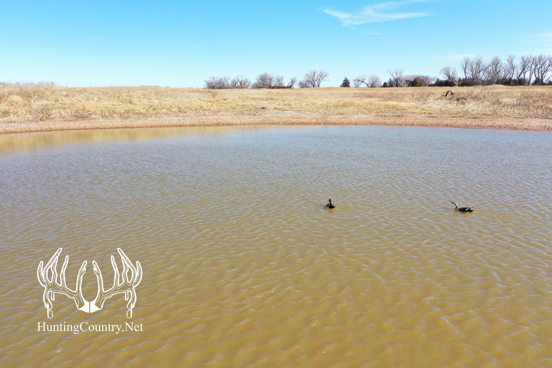 120 acres m/l. Harper County Kansas Grazing Land For Sale