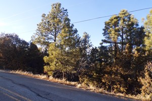 EDGEWOOD, NM RESIDENTIAL 2-ACRE WOODED LOT