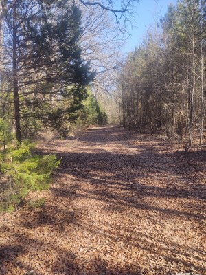 RURAL LAND FOR SALE, RECREATIONAL AND RESIDENTIAL PROPERTY